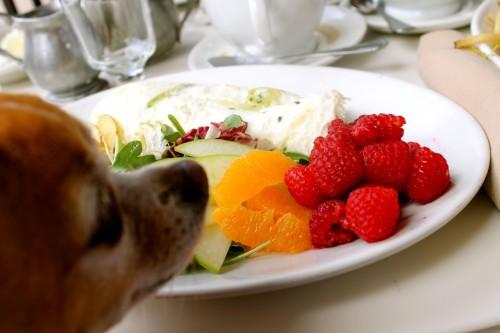 Egg Whites Breakfast