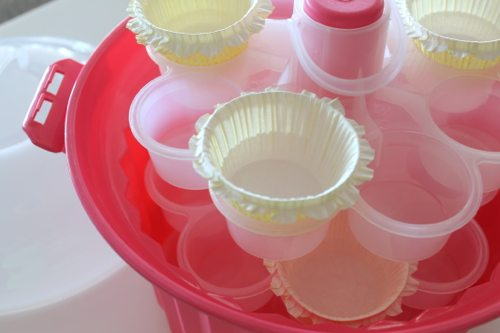 Mini-DeLites-with-a-cupcake-pink-carousel-and-Martha-Stewart-cupcake-liners