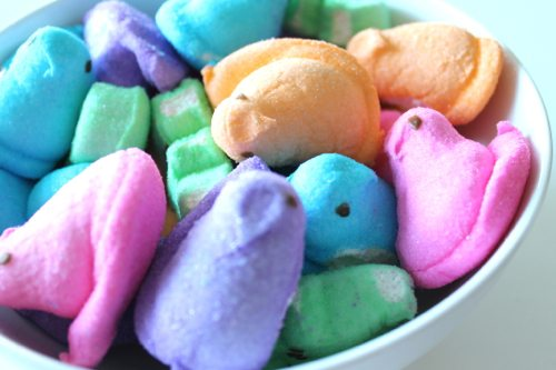 Peeps-cupcakes-with-marshmellow-chicks-and-bunnies