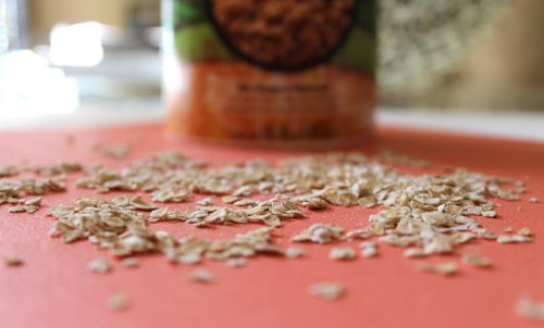 Lauryn Evarts, fitness blogger and health blogger, shows a pumpkin pie spice oatmeal recipe by Undressed Skeleton.
