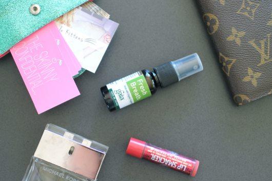 Mini DeLites with purse contents