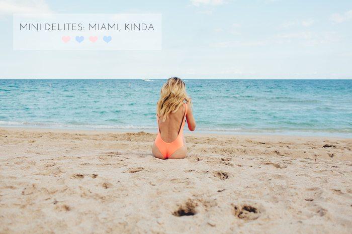 mini delites miami | by the skinny confidential