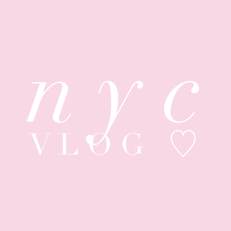 video blog new york city edition by the skinny confidential