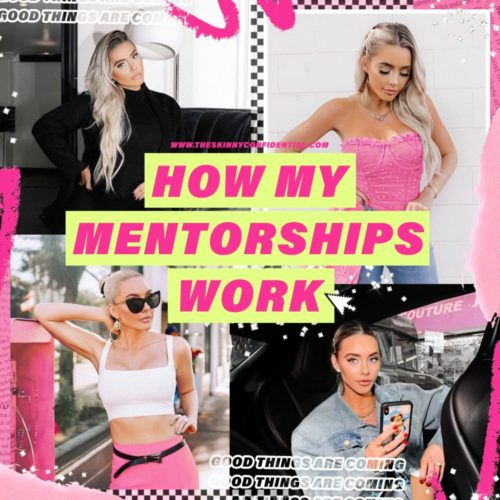 How My Mentorships Work