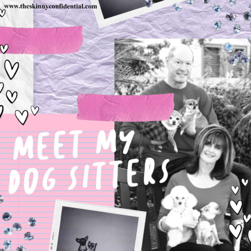 Meet My Dogsitters: Everything You Need To Know About Your Pups