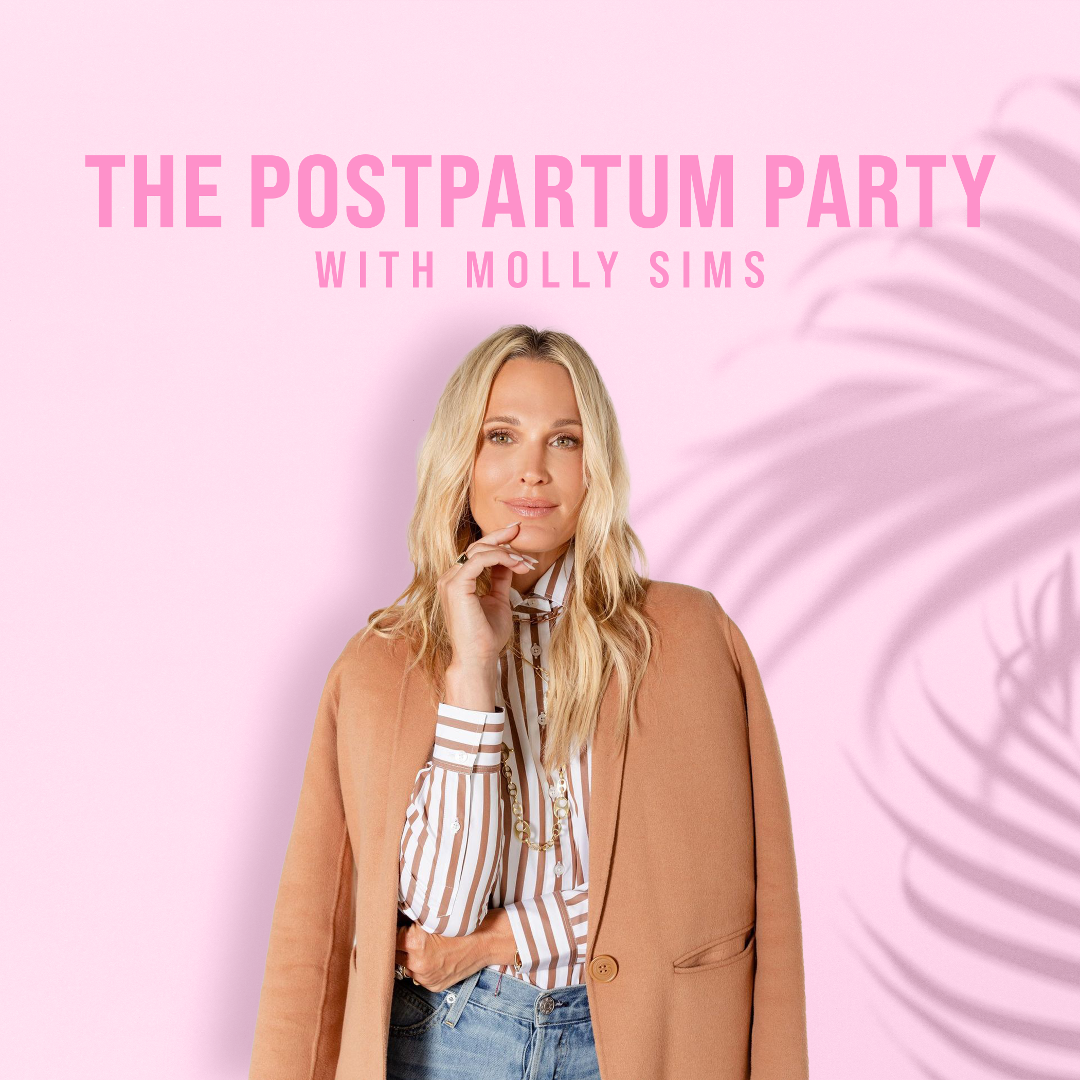 The Postpartum Party With Molly Sims